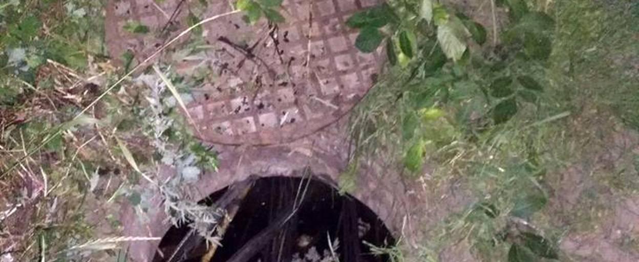Крадія мідного кабелю спіймали на гарячому патрульні Борисполя. Фото