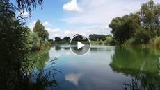 Чи безпечно купатися в озерах Борисполя – дізнавалися наші журналісти. Відео