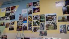 Фотоаматори представили 126 робіт на міському етапі конкурсу «Моя Україно!». Фото
