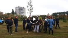 На території Книшового меморіального комплексу висадили 54 дерева вартістю 200 000 грн. Відео