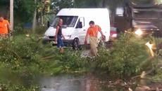 Затоплені вулиці та повалені дерева: наслідки апокаліптичної негоди у Борисполі. Відео
