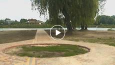 Зони відпочинку, пішохідні доріжки та парковка: у Борисполі облагороджують Олесницьке озеро. Відео
