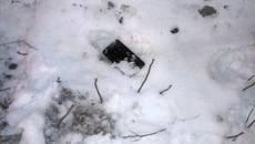 Двоє молодиків пограбували іноземця у Борисполі – патрульні затримали підозрюваних. Фото