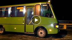 Перевізники оновлюють техніку – Борисполем курсуватиме чотири новеньких автобуси. Відео