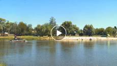 На Княжицькому озері у Борисполі протягом двох днів чистили воду. Відео