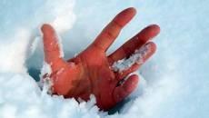 Замерзлого в снігу іноземця врятували патрульні Борисполя