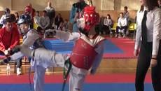 Кубок Борисполя з тхеквондо: близько 300 учасників змагалися хто сильніший. Відео