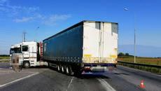 Аварія на перехресті: дві вантажівки не розминулися поблизу села Проліски. Фото