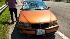 На Бориспільському шосе водій BMW збив двох велосипедистів. Фото